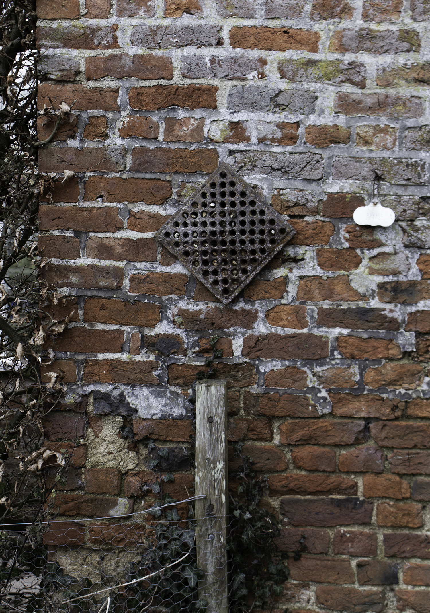 A bee hotel?