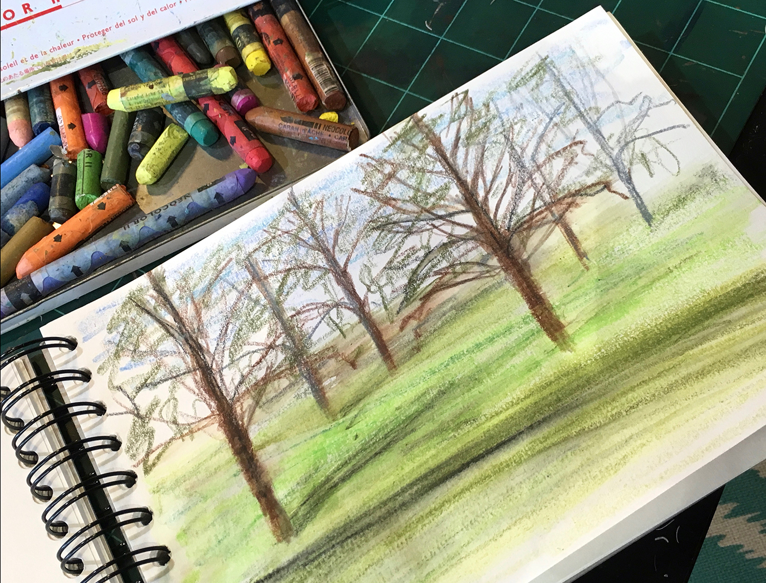 A crayon sketch of trees in the landscape of the Gunby Hall Estate