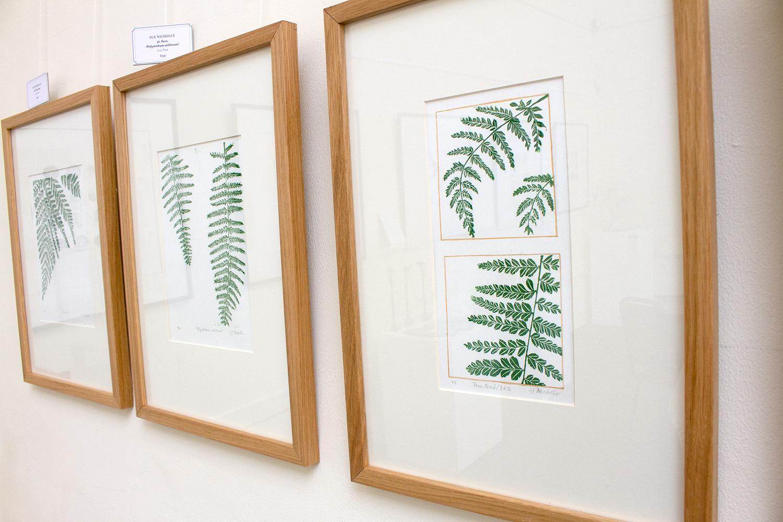 Sue Nicholls - Fern Prints