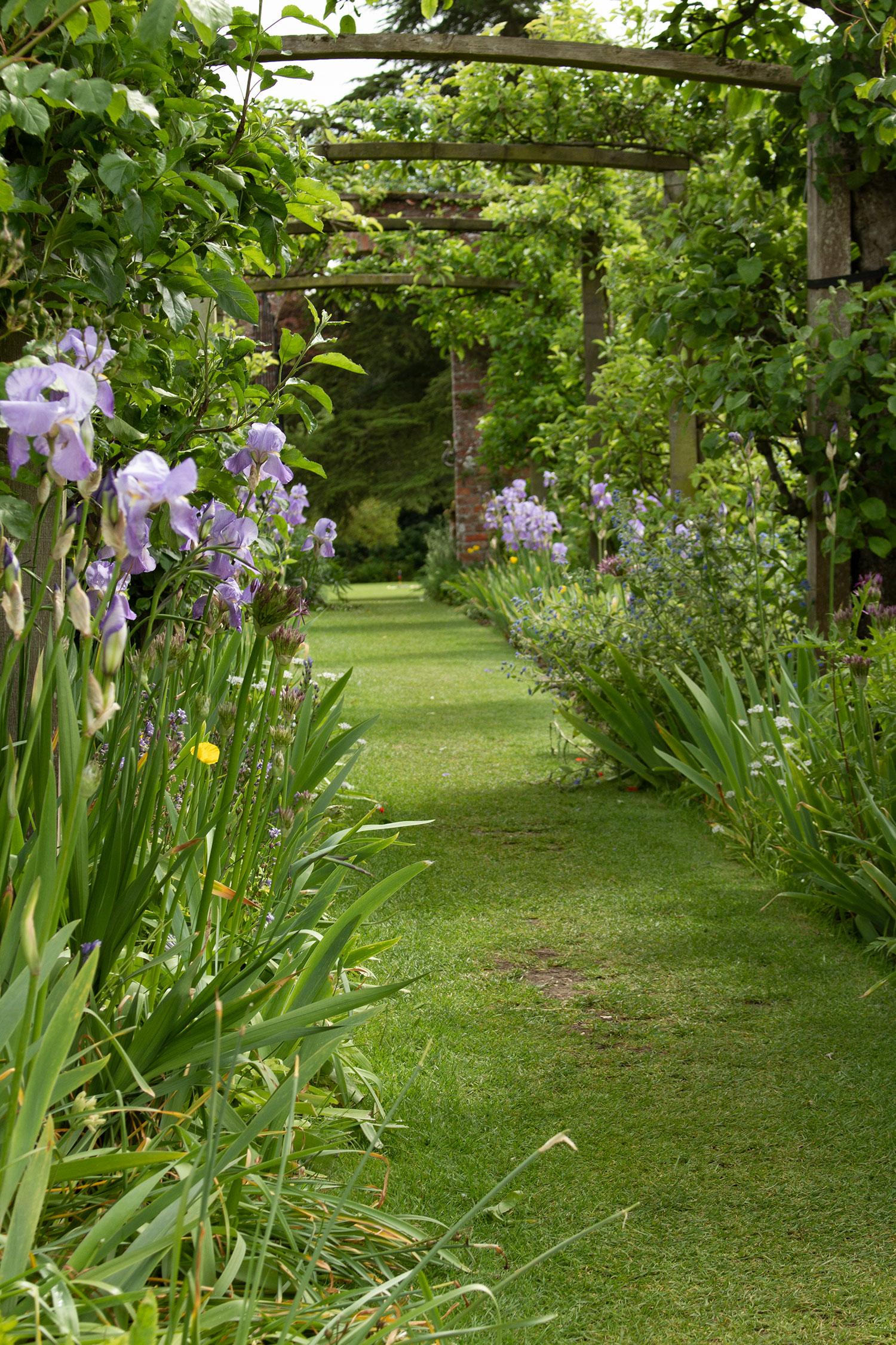 Pergola Garden spring.jpg