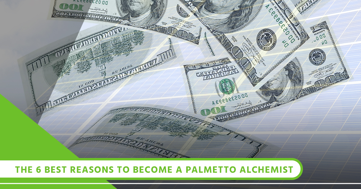 The 6 Best Reasons To Become A Palmetto Alchemist.jpg