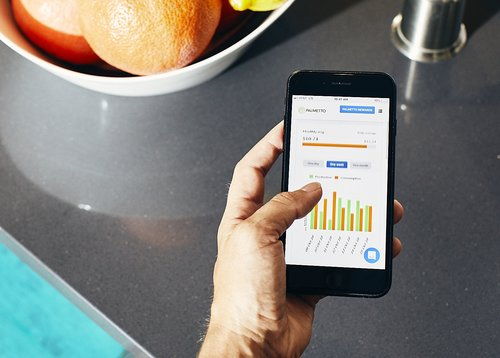 MONITOR YOUR SOLAR ENERGY PRODUCTION   As a solar homeowner, you want to maximize your monthly savings on utilities. With Palmetto Cares, you'll be able to manage and track your energy consumption right to your smartphone or tablet—all in real time!