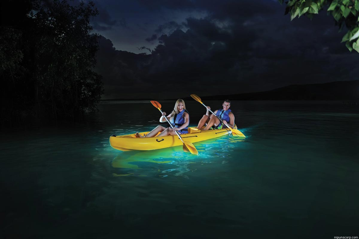 Puerto-Rico-Kayaking-Bio-Bay.jpg