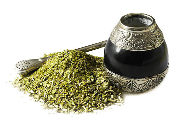 south_american_yerba_mate.png