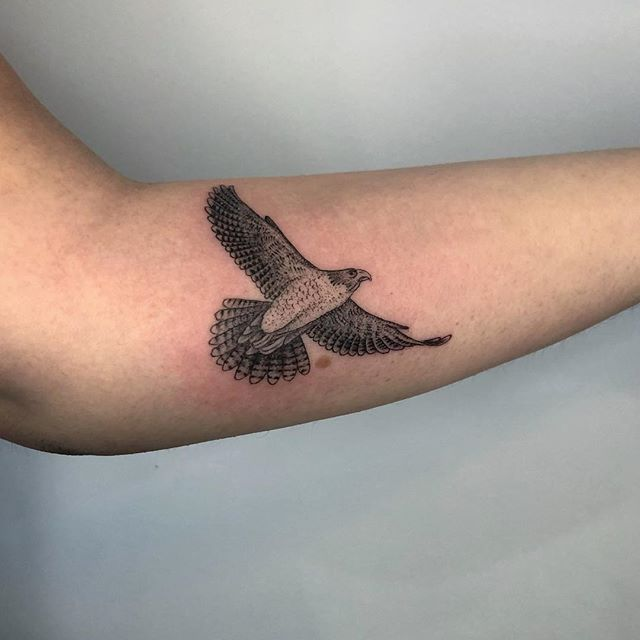 Hawk for Felicia! • dukkhatattoo@gmail.com