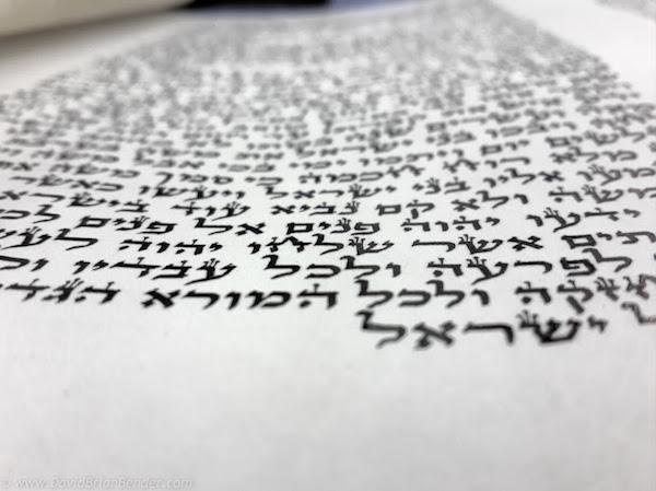 Dave_Bender_Tzfat_Torah_scroll_Abuhav--28.jpg