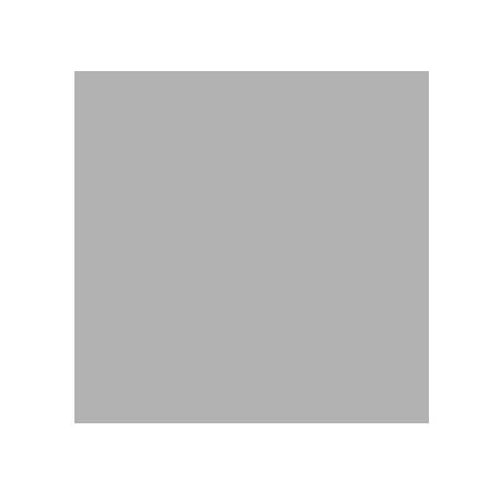 melanieabrantes-450-b2b2b2.png