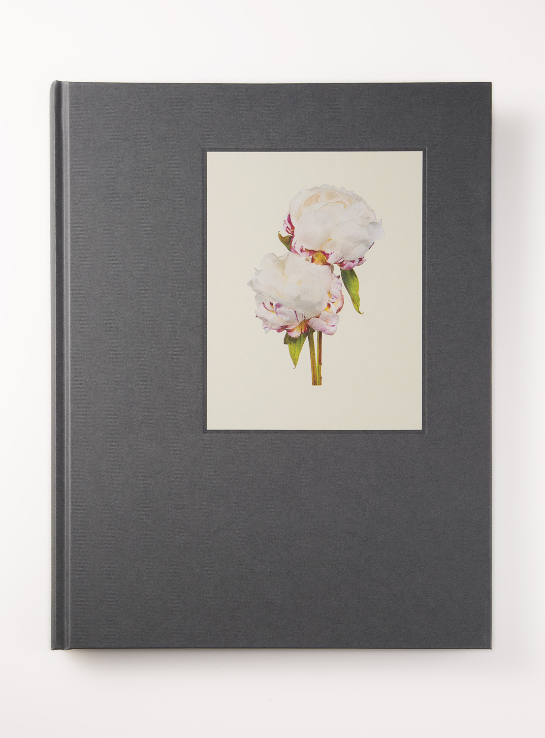 150dpi_THE MOST BEAUTIFUL FLOWERS-FRONT_COVER.jpg