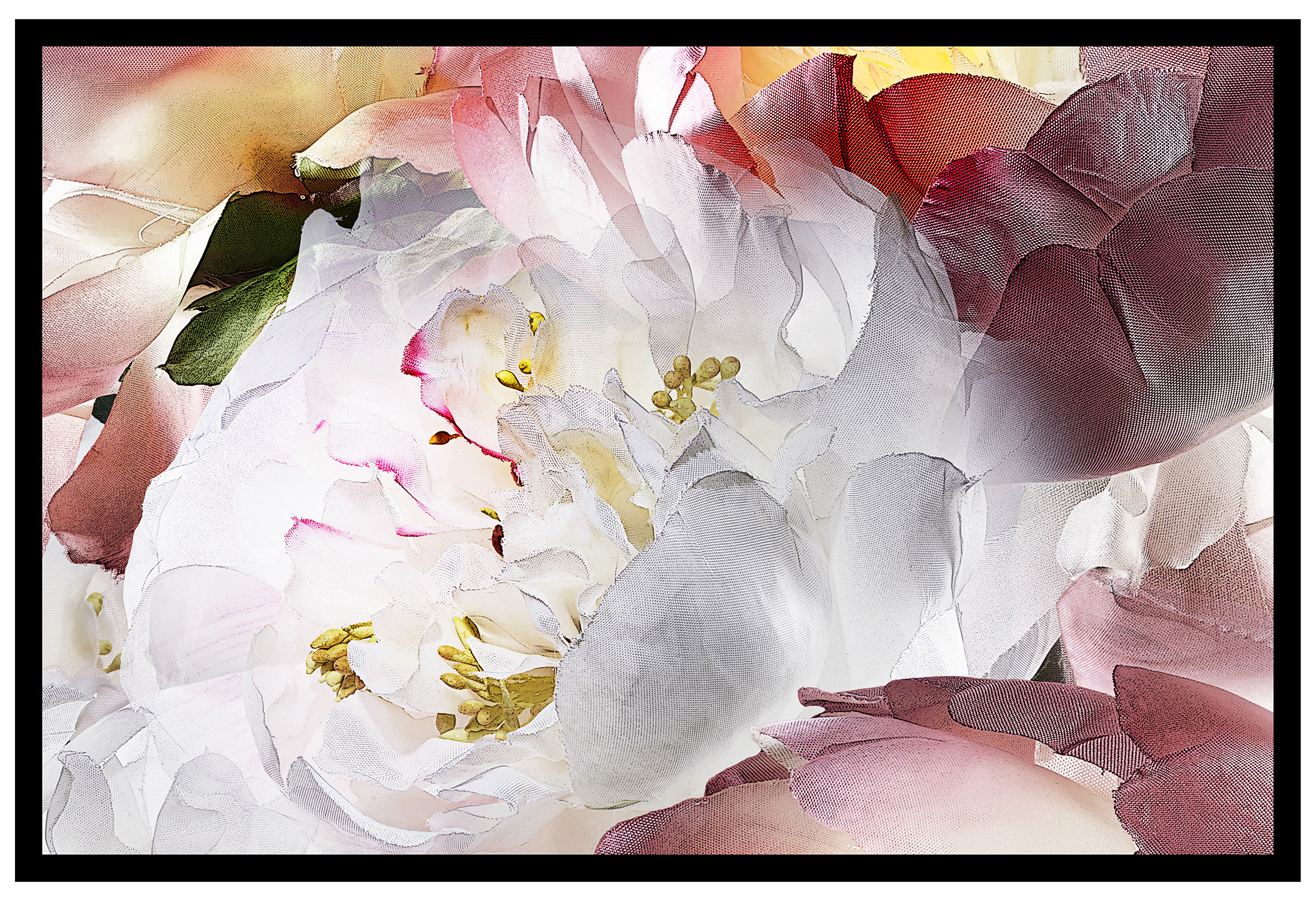 Print-Single frame-19x13-10mm-line-Peony-AB-6Box-A-2.jpg
