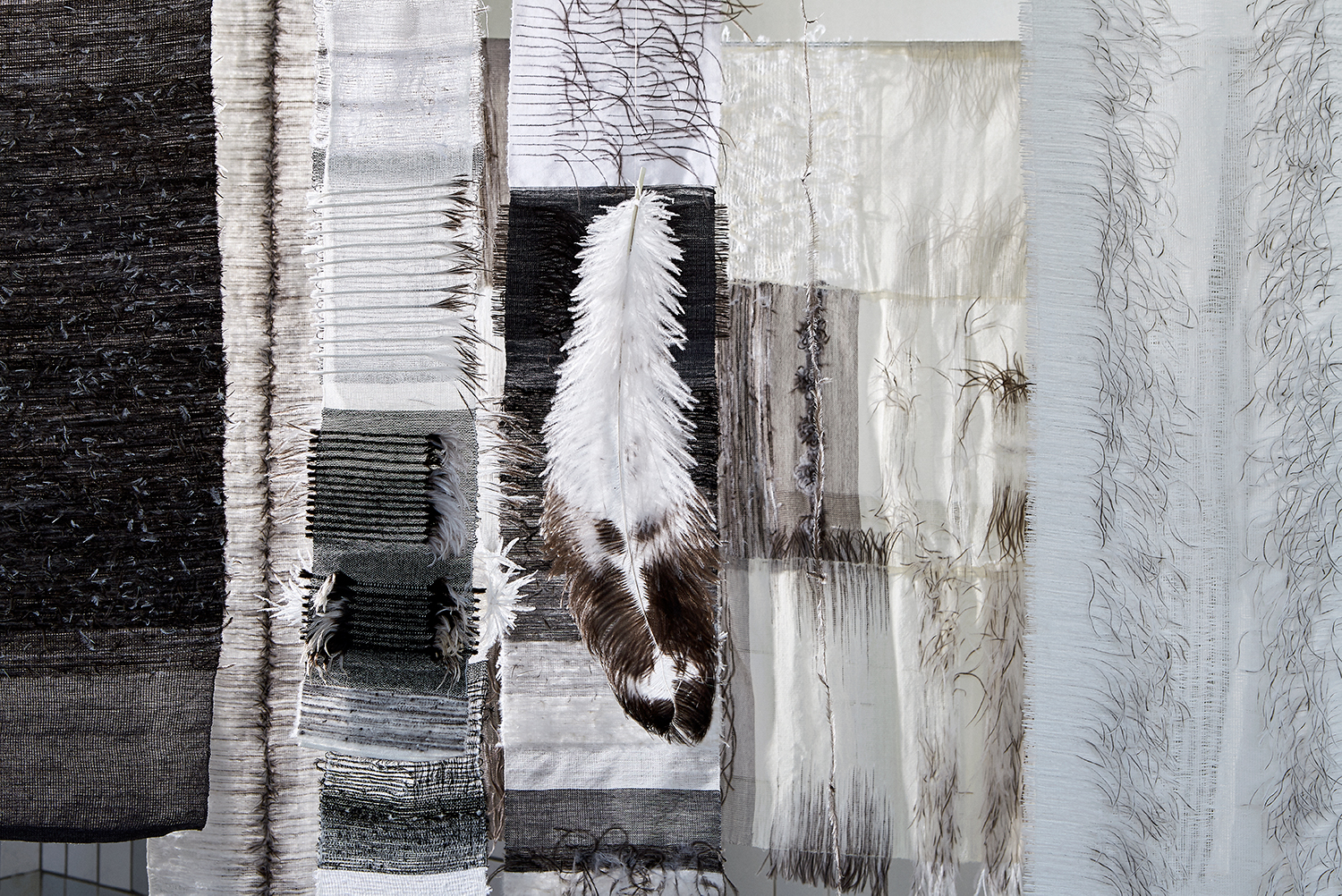 """Feathered Fabrics"" hanging with a single ostrich feather."