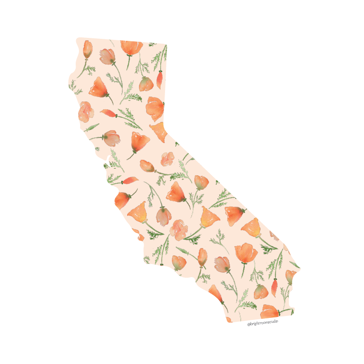 Watercolor California Poppy Art
