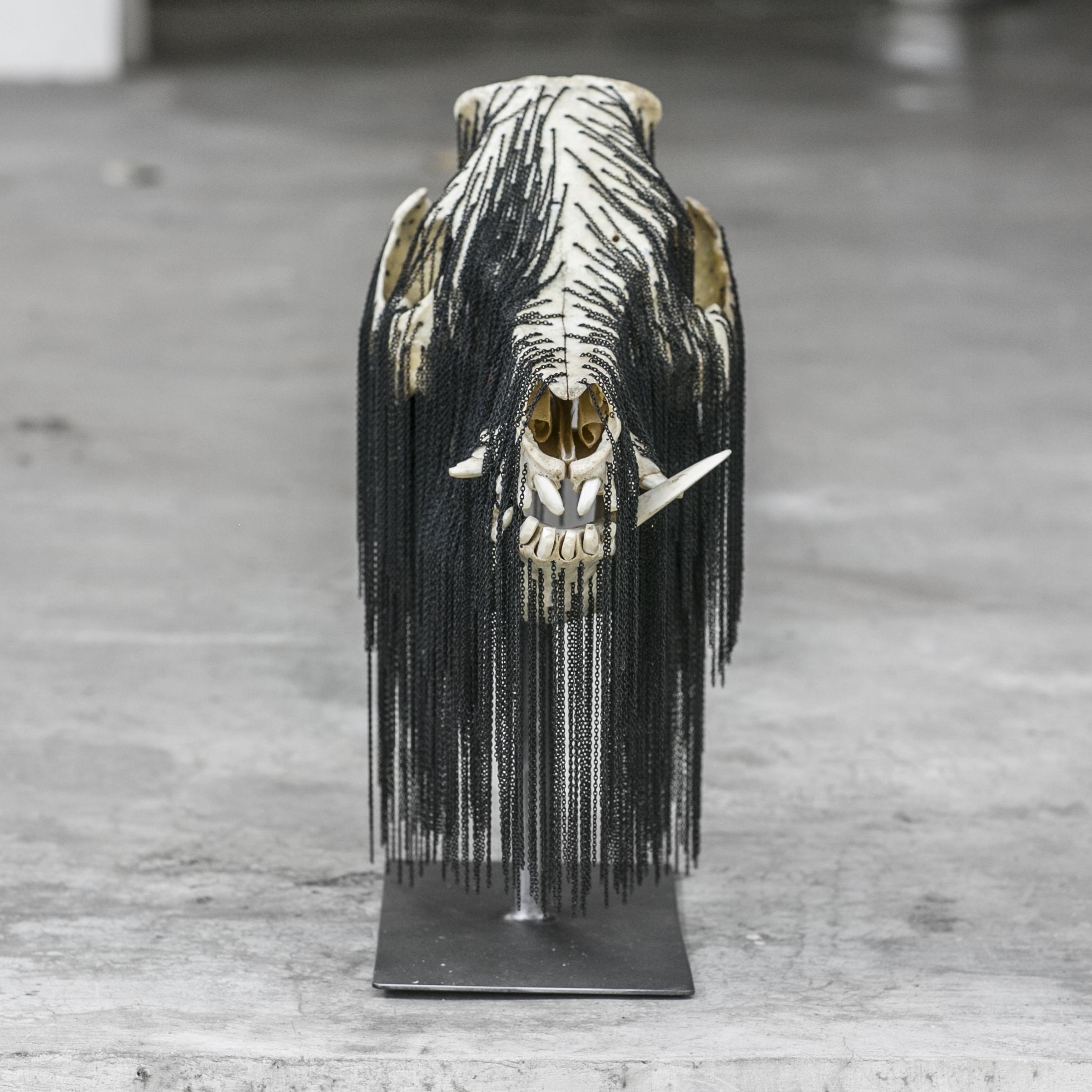"""Babi Hutan Chain  , Wild Boar Skull/Jewelry Chain/Metal Stand 7.5""""W, 15"""" L, 17"""" H"""