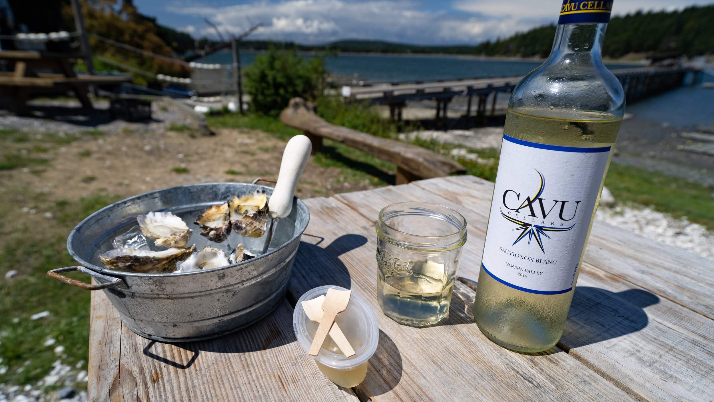 oysters_westcott_bay_shellfish.jpg