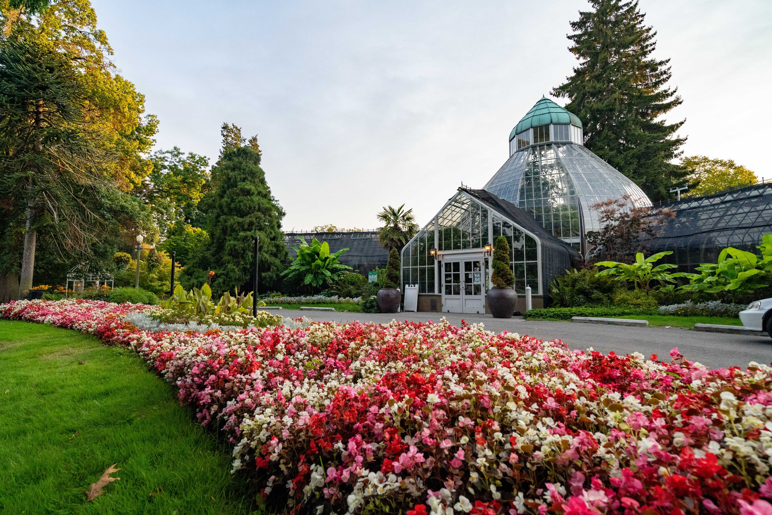 ww seymour botanical conservatory at wright park.jpg