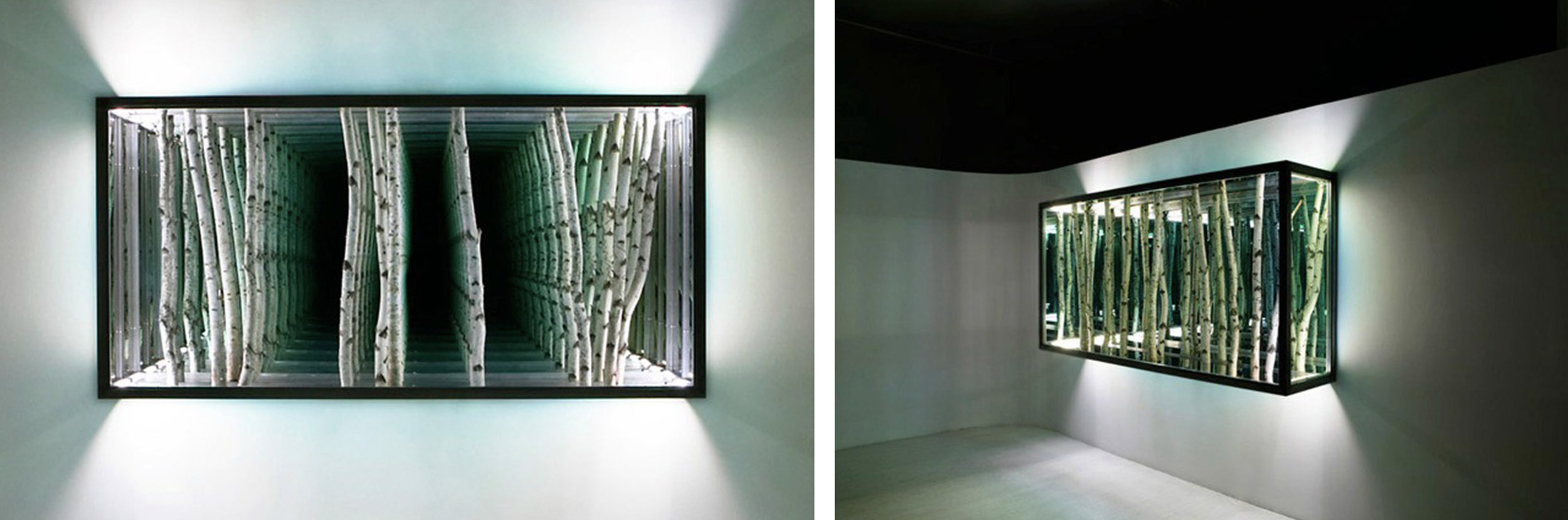 Anthony James  Birch Wall Mounted 2007  Birch, aluminum, glass, fluorescent lights  48 x 96 x 20 inches      View More Anthony James