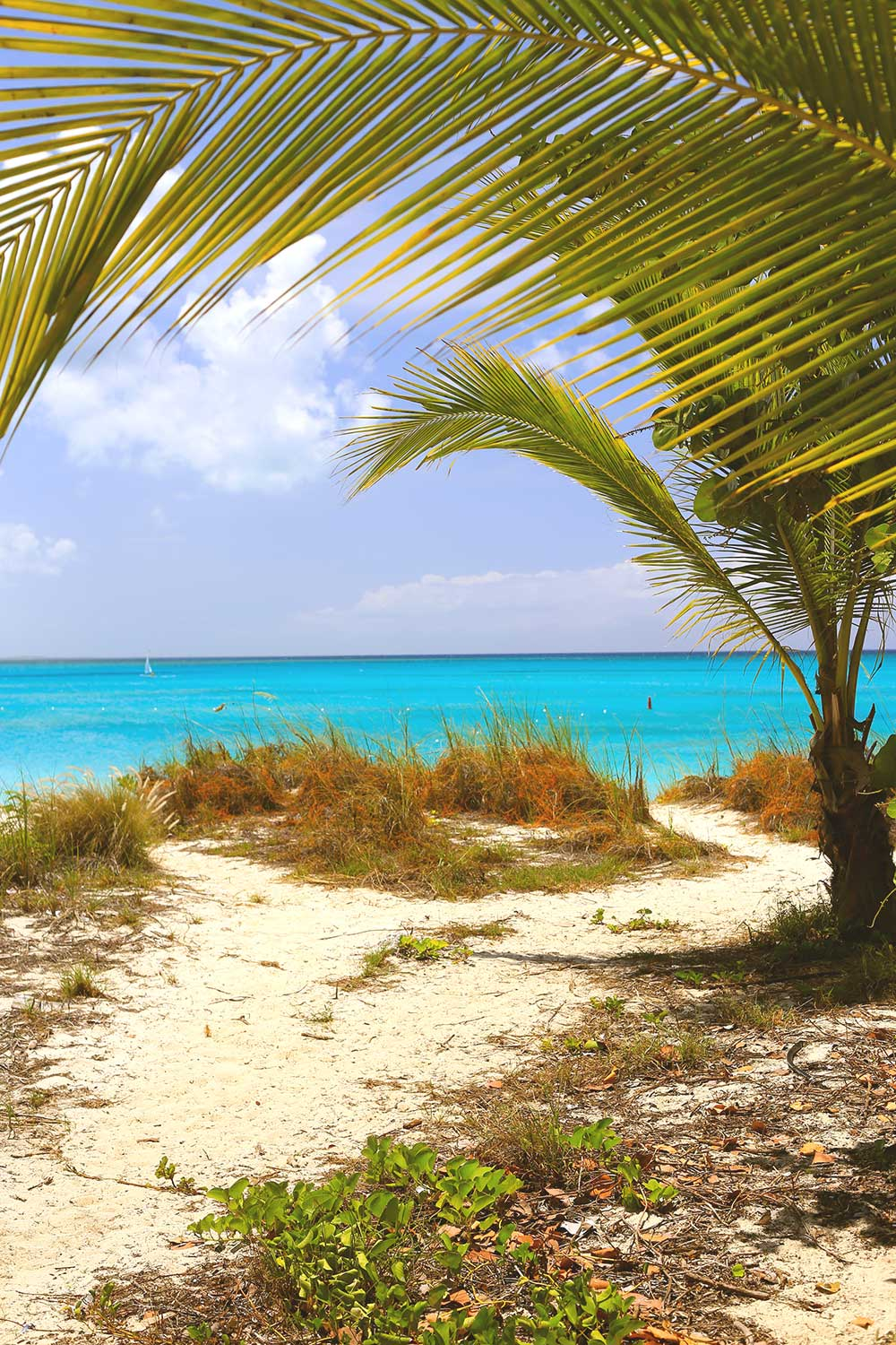 Grace Bay Beach in Turks & Caicos can feel secluded, even though it is a public beach. We avoid crowds by keeping to the far ends of Beaches' resort.