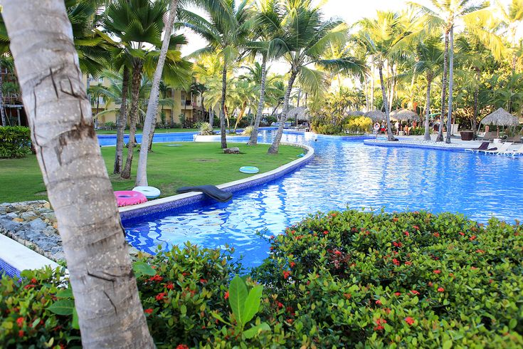The pool at Dreams Punta Cana is whatever you want it to be. There are wide spots and narrow, loud spots and quiet, sunny spots and shady. It's the heart (and arteries) of the resort.