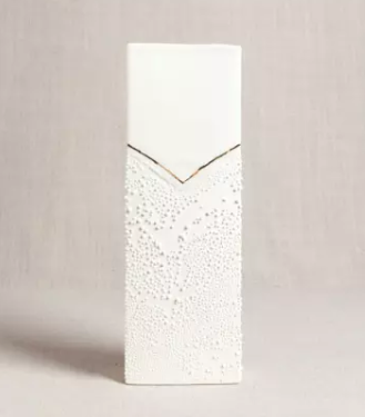 Rectangle Vase w Texture.PNG
