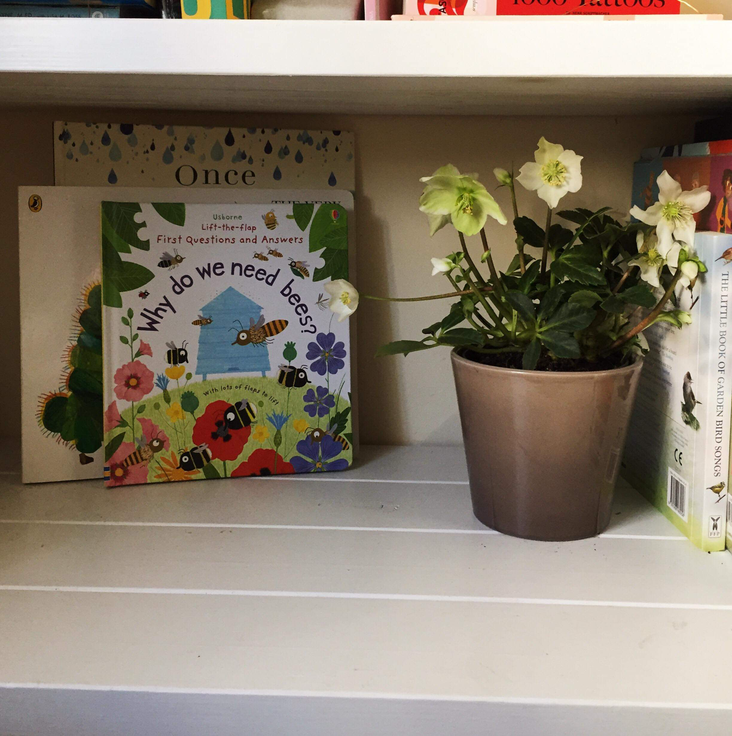 On our book shelves we have a plant in bloom for the month, and a few seasonal books. I think over spring we may plant some grass or cress in a pot to play with, or maybe a few bulbs to grow together.