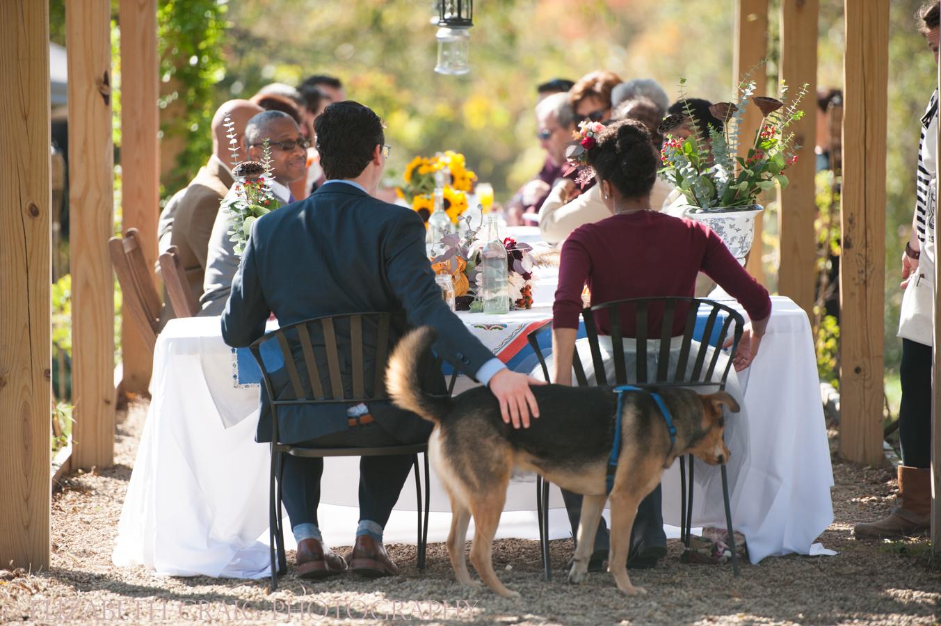 Pittsburgh Small Weddings | Churview Farm-82