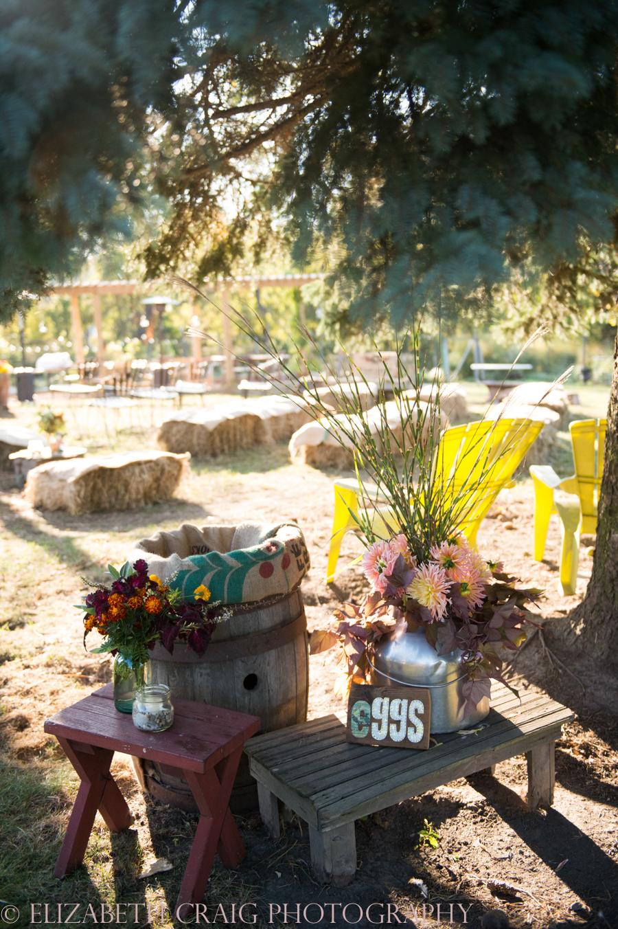 Pittsburgh Small Weddings | Churview Farm-13