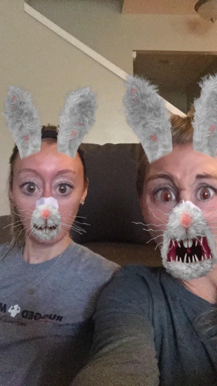 Snapchat rabbits