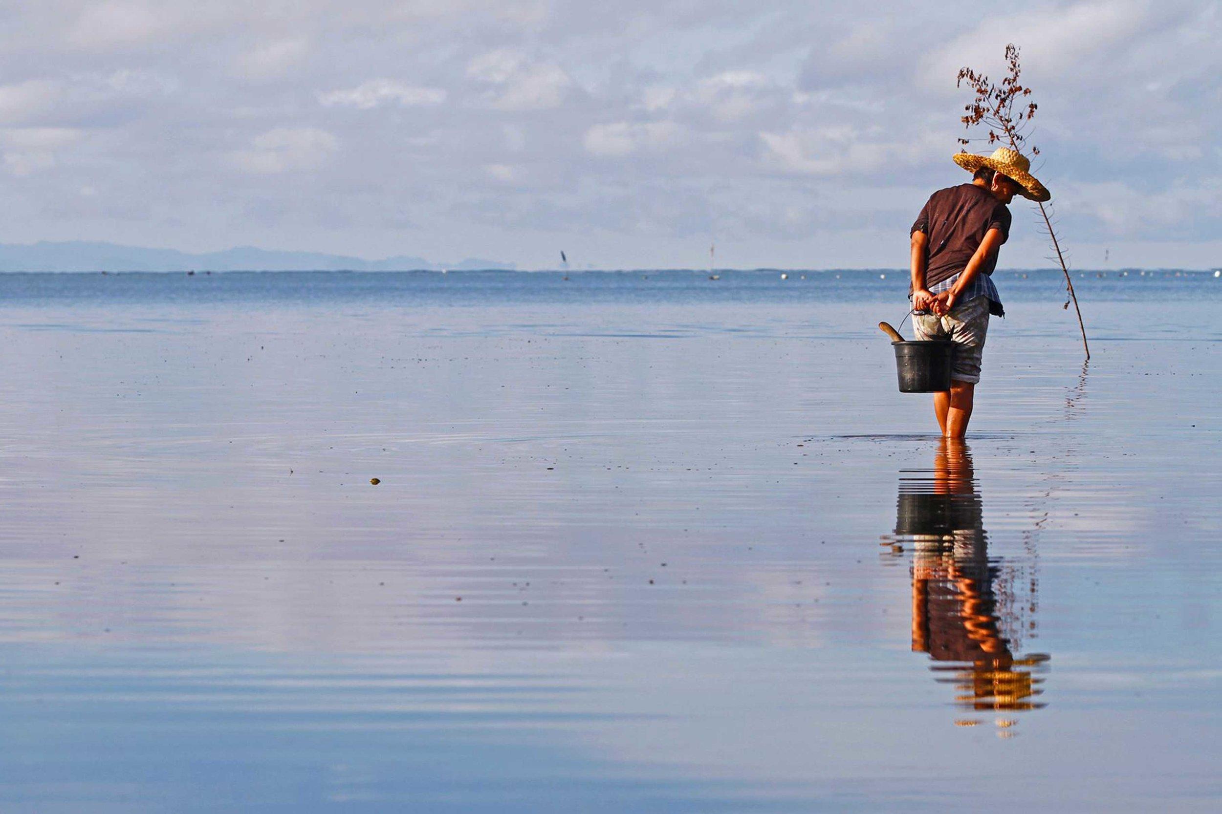 Coastal-Musings-Image-2.jpg