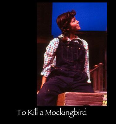 To-Kill-a-Mockingbird---d.jpg
