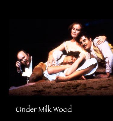 Under-Milk-Wood-d.jpg