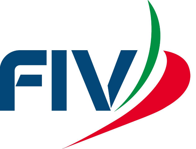 fiv logo .png