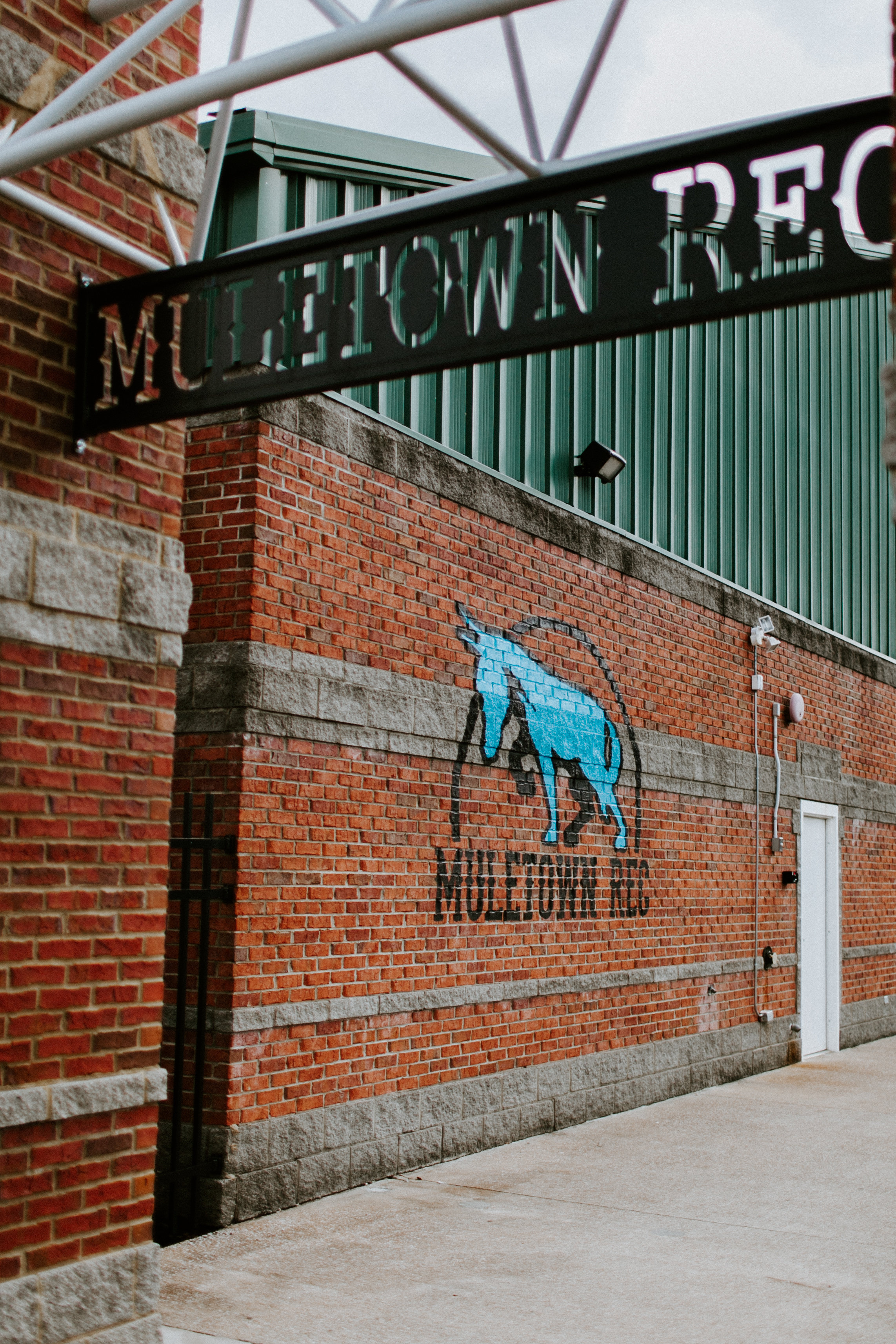 Hand Painted Logo Mural for Muletown Rec