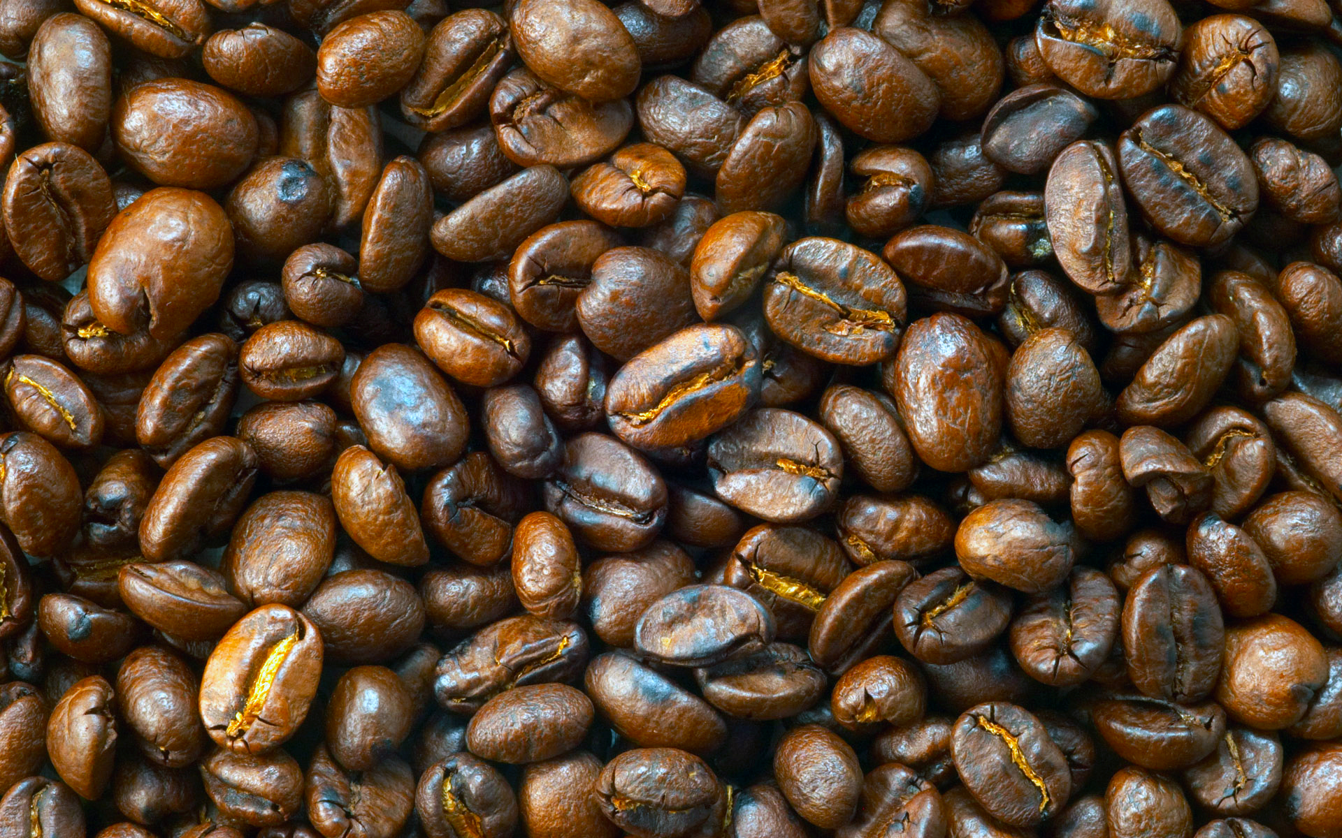 Freshly roasted coffee beans from our supplier