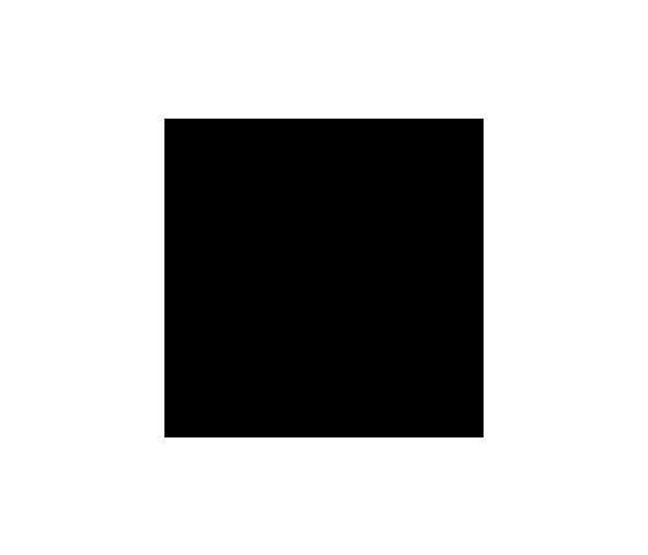 Black-on-Black---Client-Logos---DINZ.png