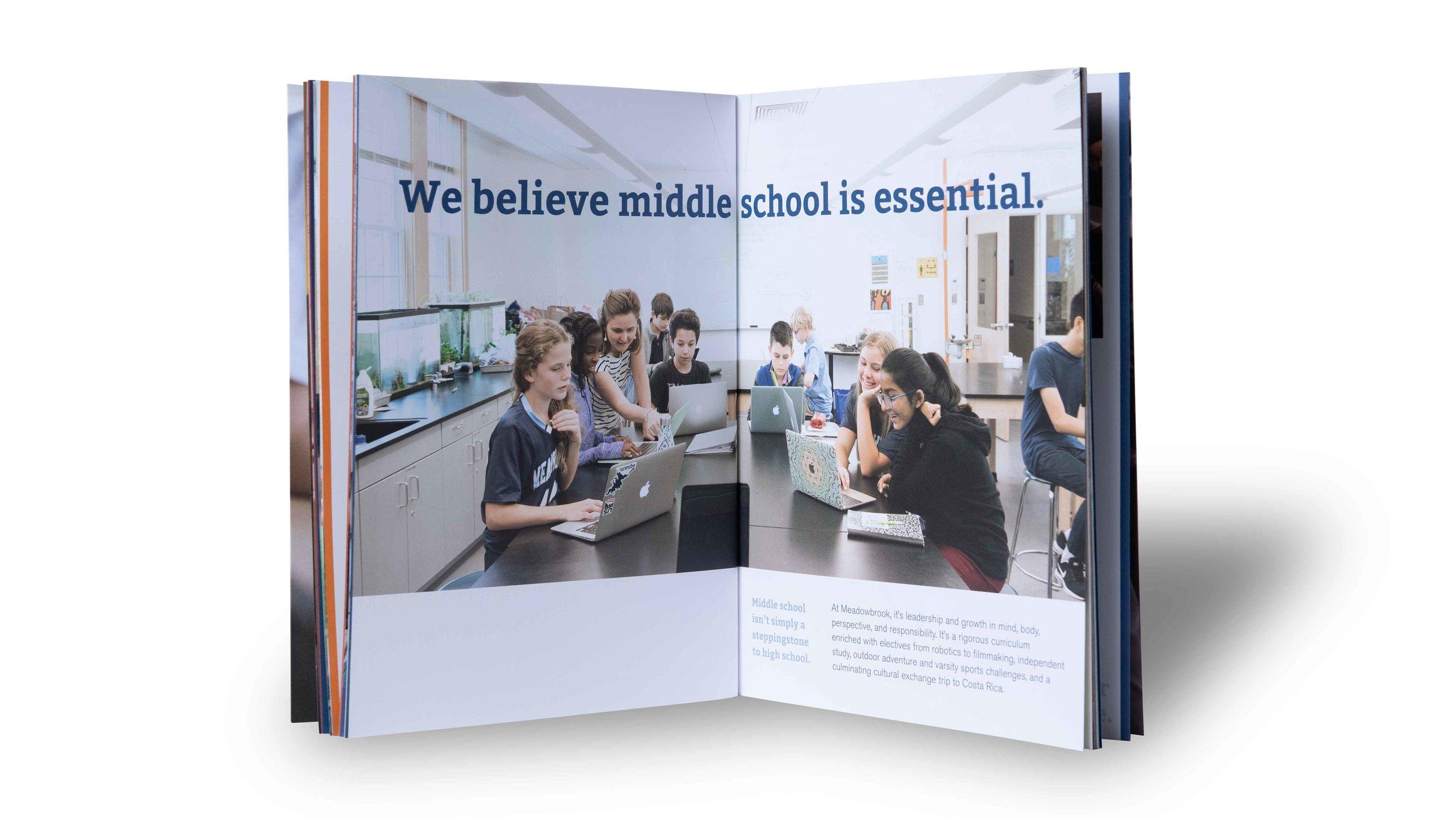 Meadowbrook-School-Creosote-Affects-Viewbook-9.jpg