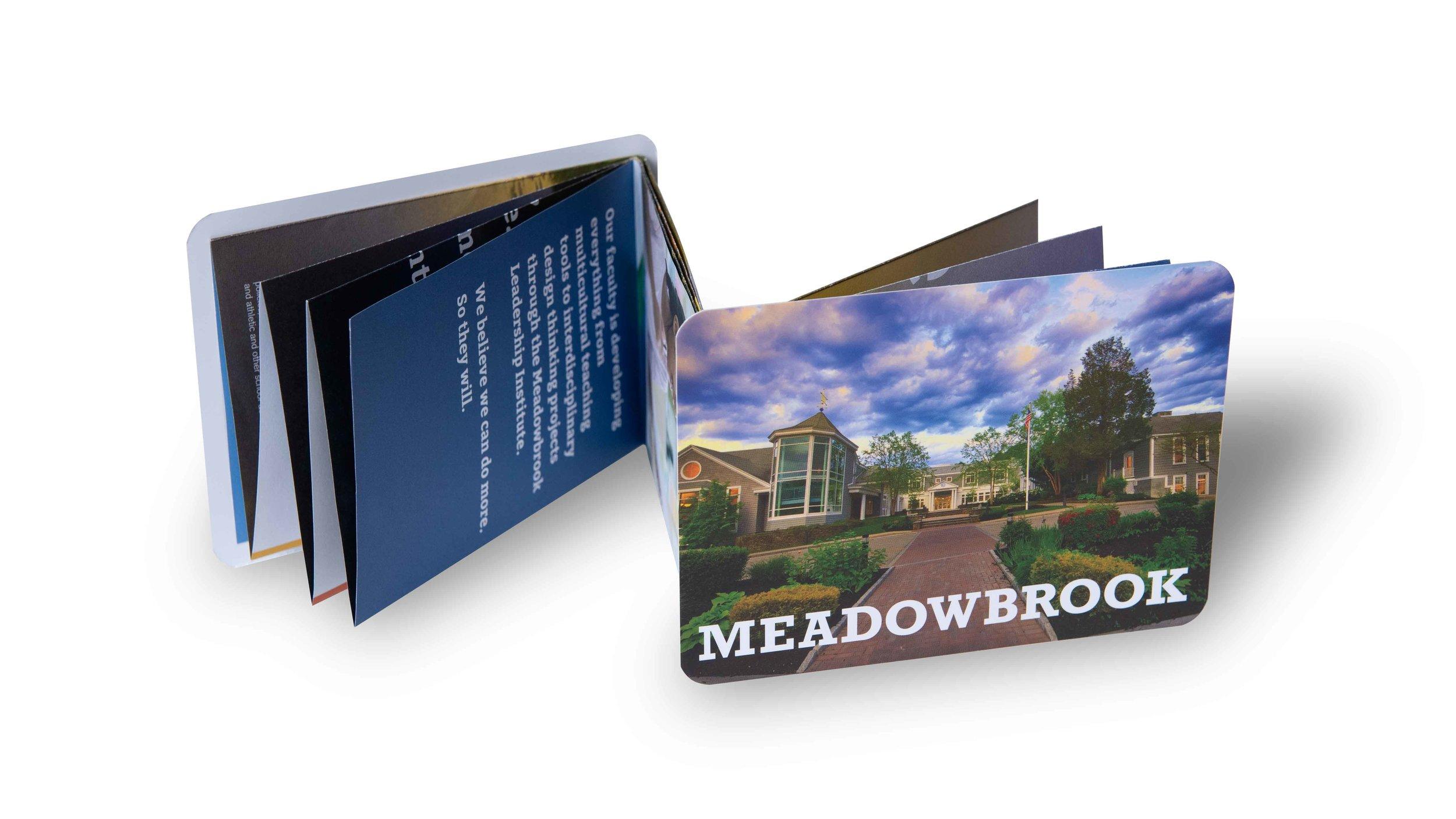 Meadowbrook-School-Creosote-Affects-Travel-Brochure.jpg
