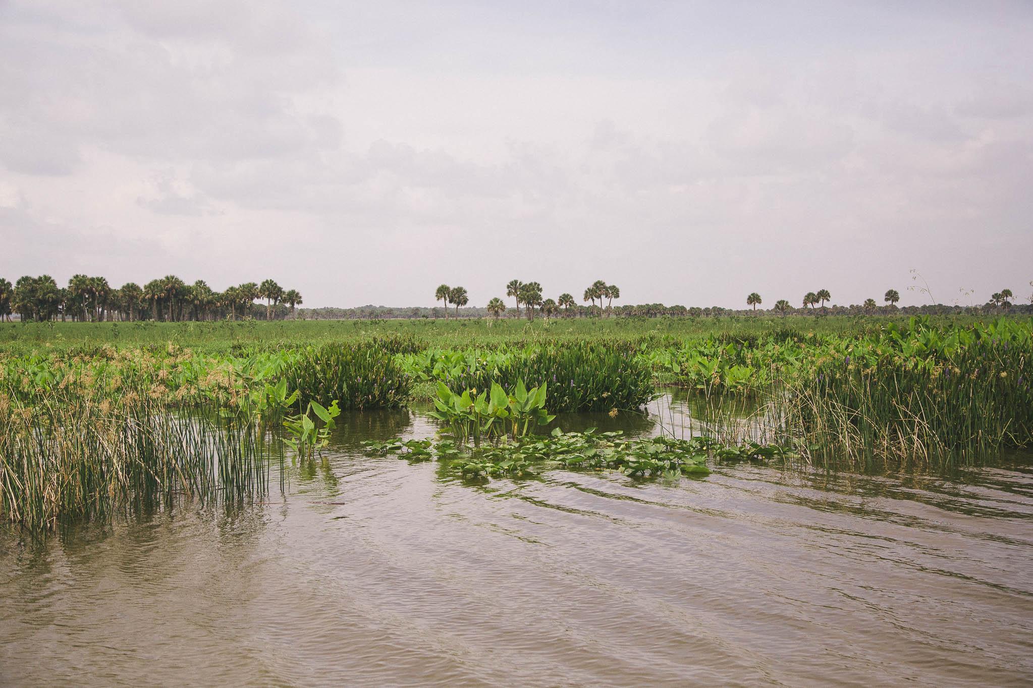 Florida-Lorraine-Yeung-21-1.jpg