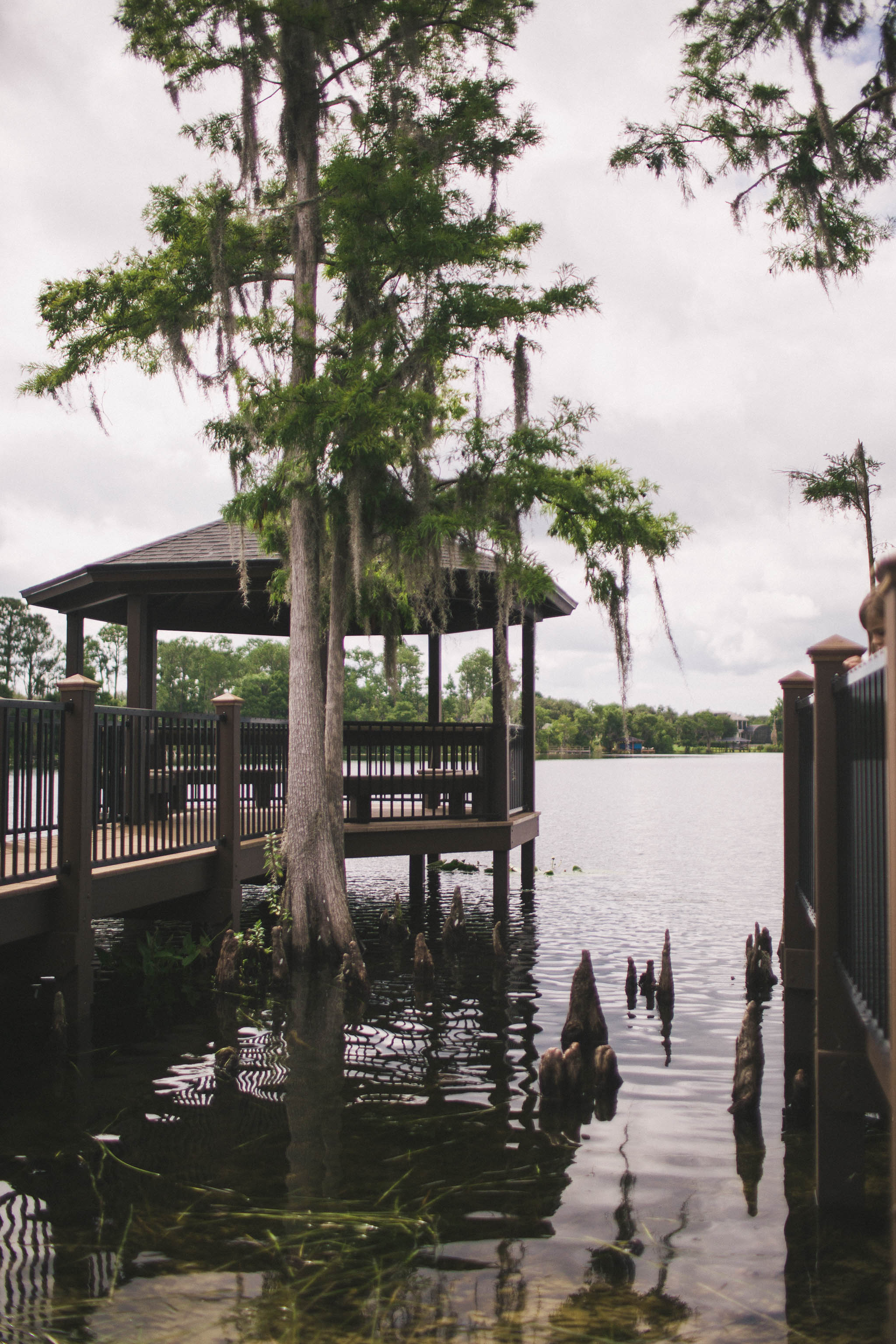 Florida-Lorraine-Yeung-7.jpg