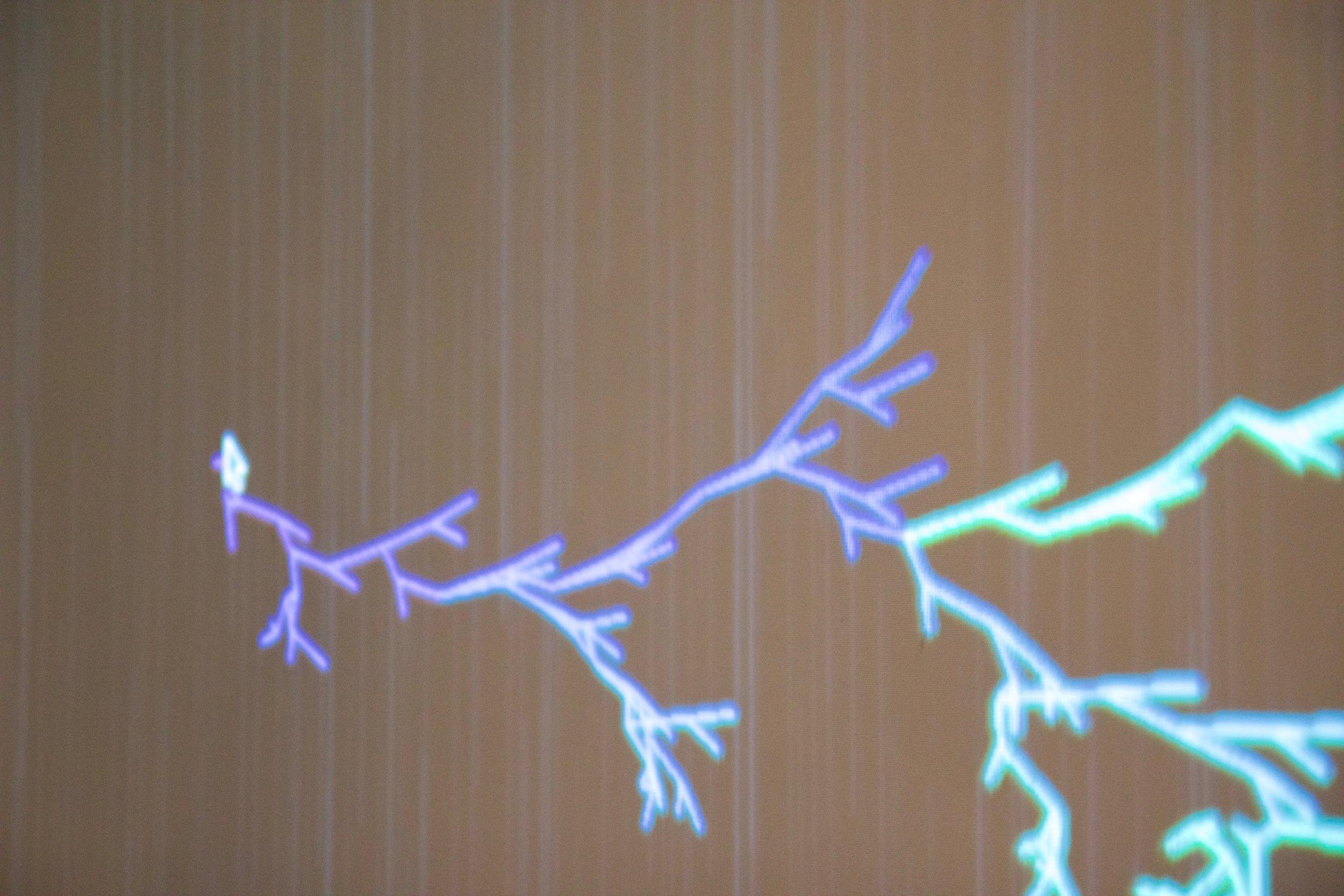 Lightning Generator Project Spring 2017