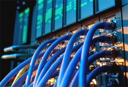 Networking Cables -