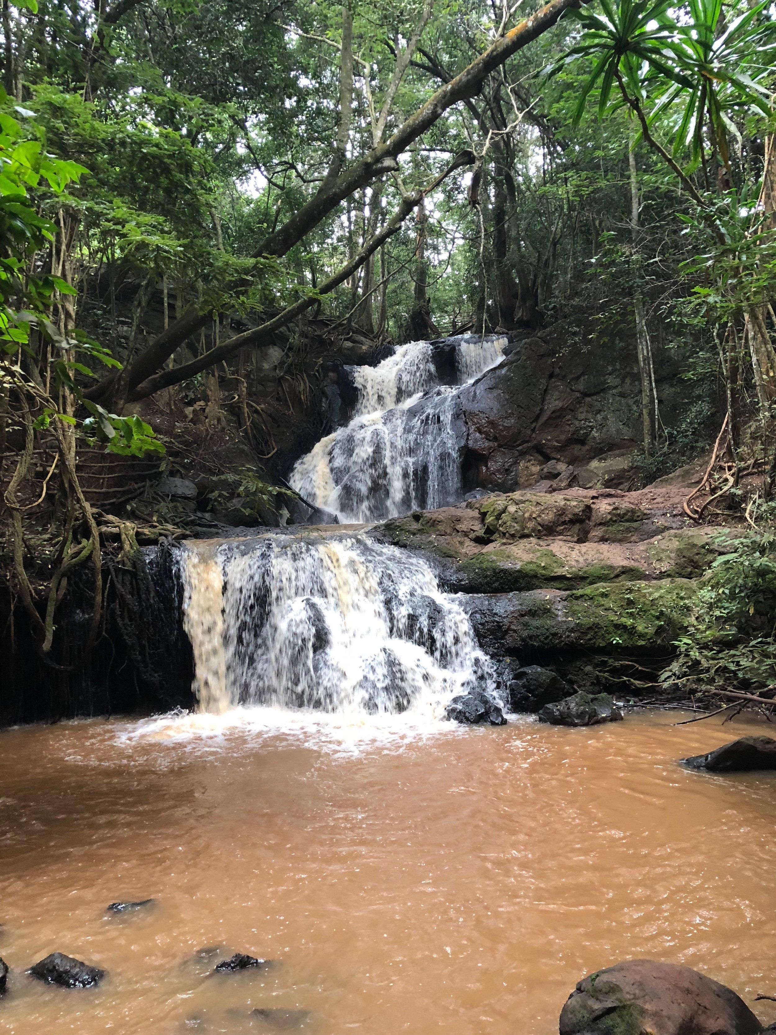 Waterfall, Karura Forest