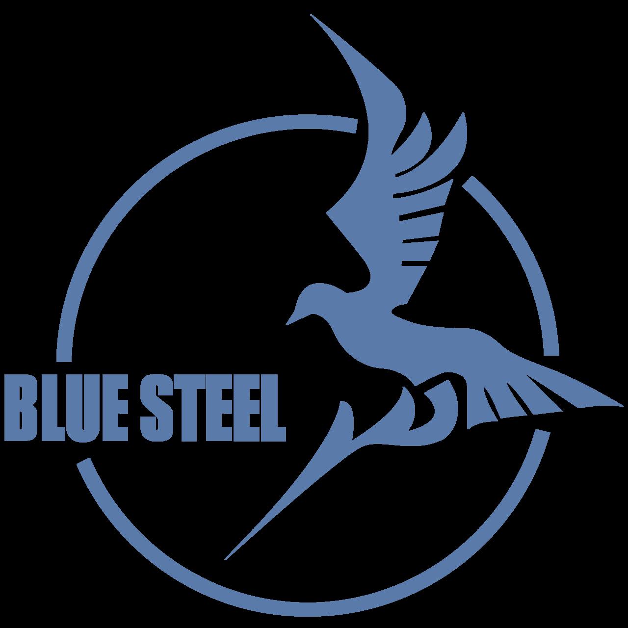 bluesteellogo.png