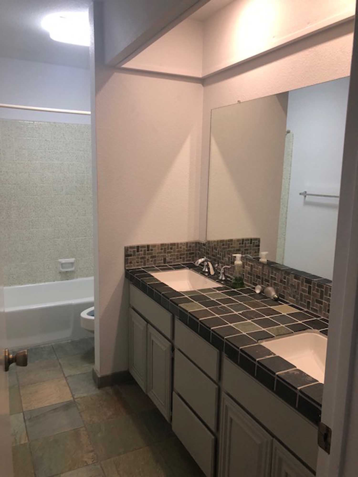 Toilet and bath with lavatory