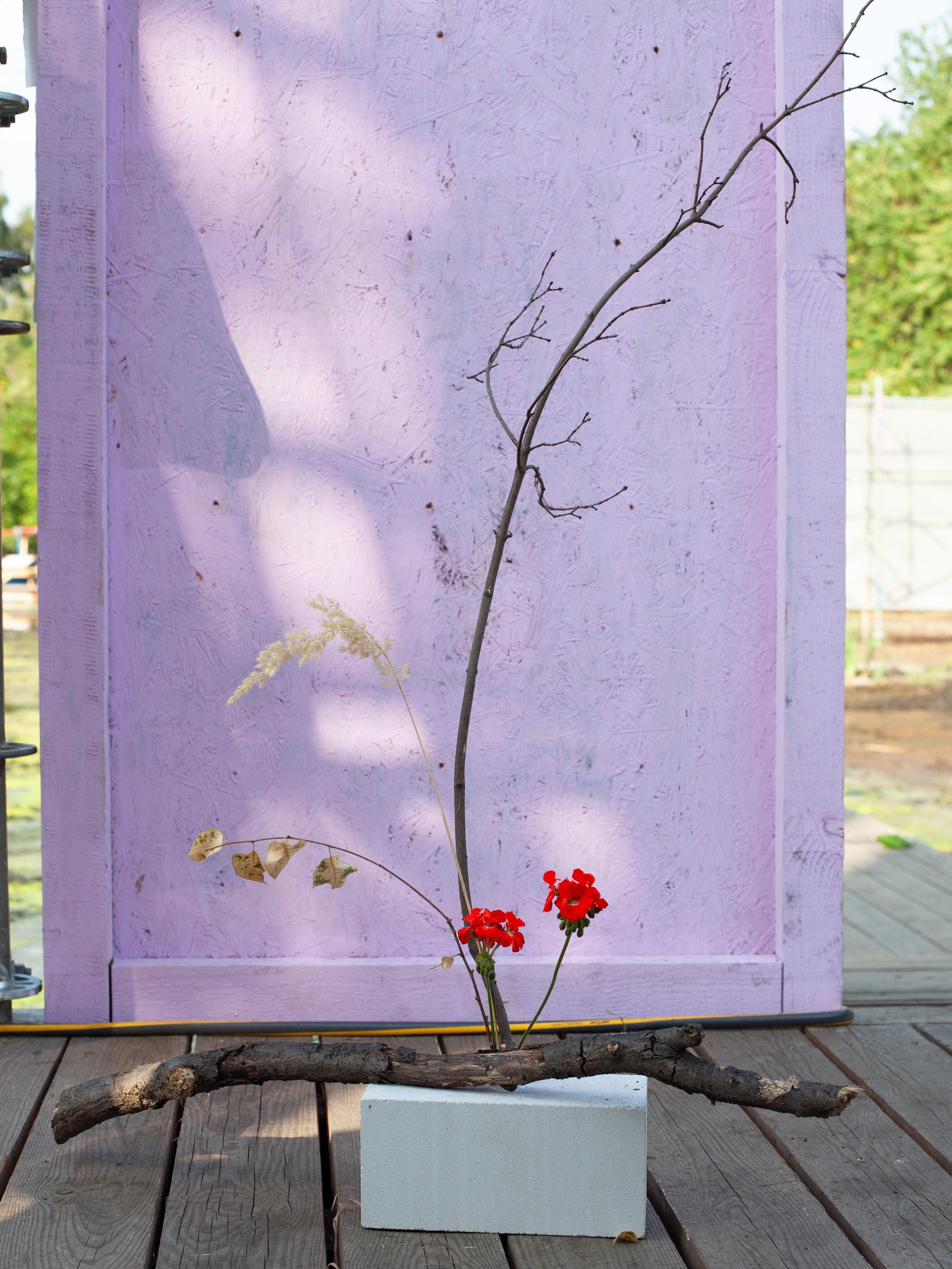 Perennialinstitute_arranging05.jpg