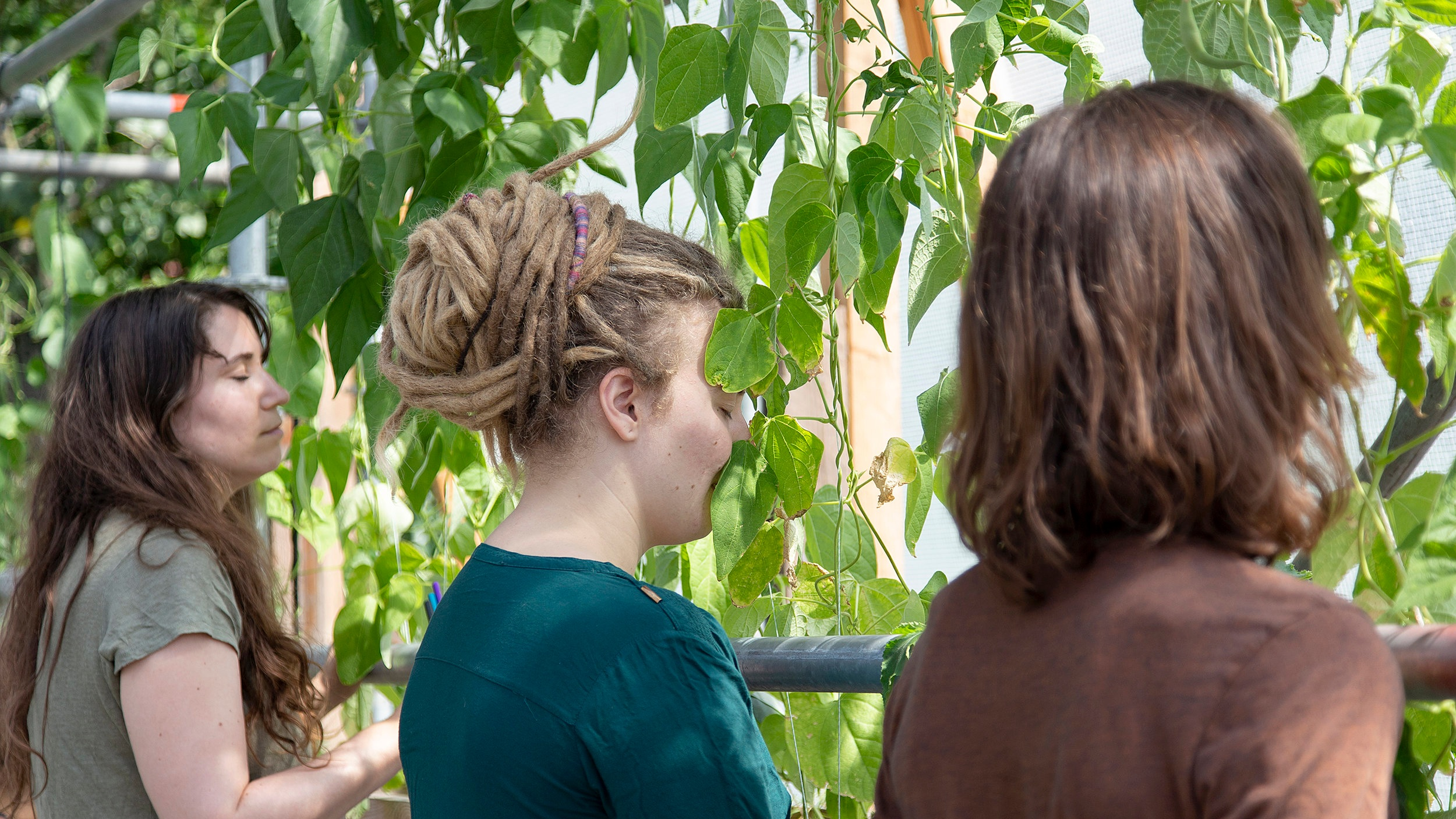 Collaborative breathing with plants at Floating University. Photography: Martina Della Valle