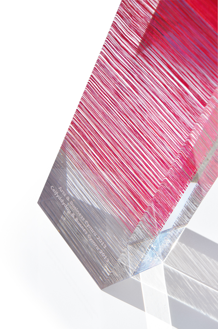 Arts & Business Award 2013. Cotton, silk, Lurex and light reflective thread encapsulated in acrylic resin.