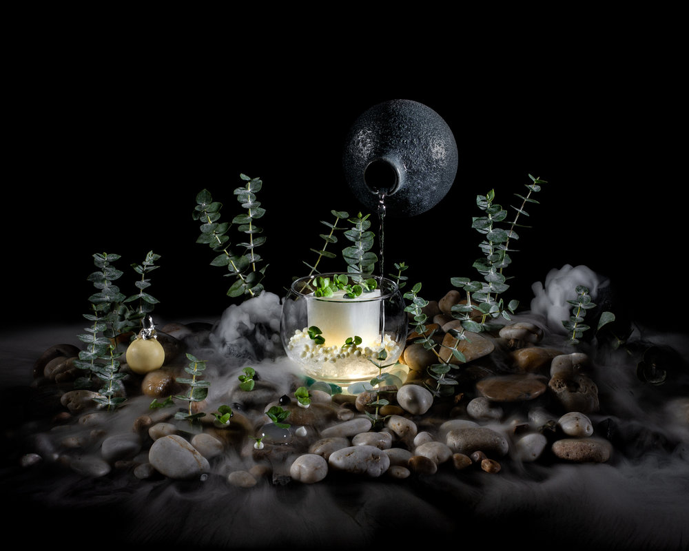 Illuminated+Eucalyptus_lowres-1+(1).jpg