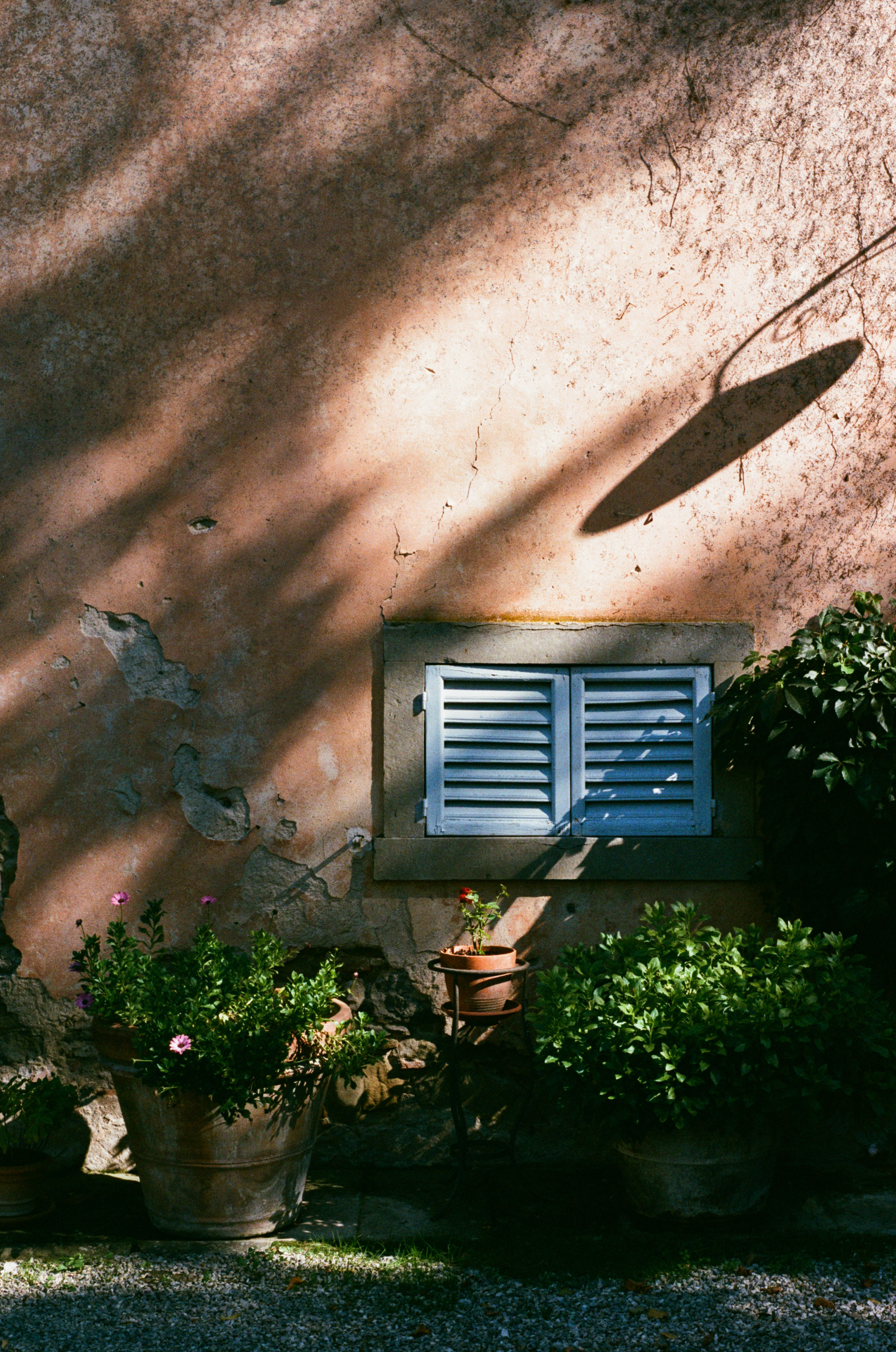 Villa_Pia_slideshow-8.jpg