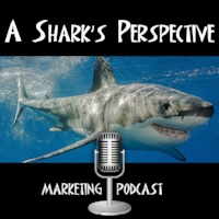 a_sharks_perspective_podcast.jpg