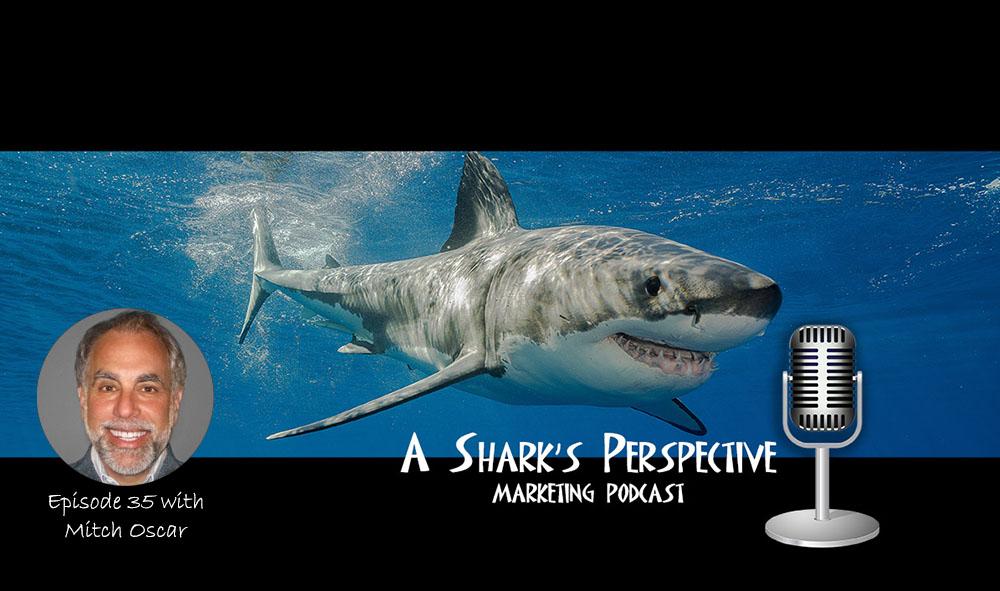 a_sharks_perspective_episode_35_mitch_oscar.jpg