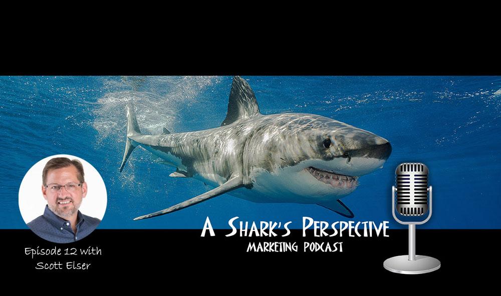 a_sharks_perspective_episode_12_scott_elser.jpg